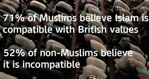 UK Survey Muslims